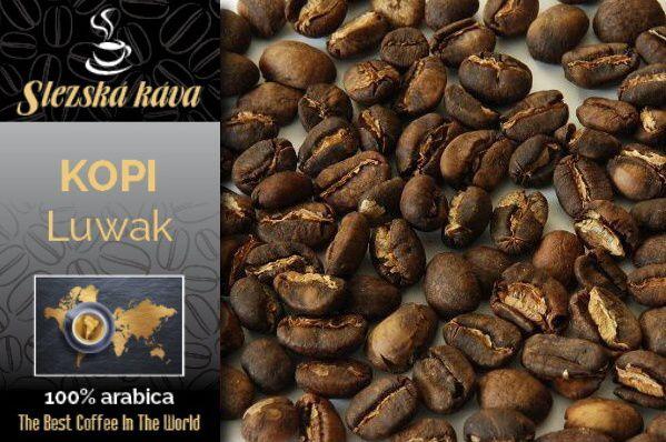 Slezská káva cibetková KOPI LUWAK -Sumatra Slezská káva a čaj